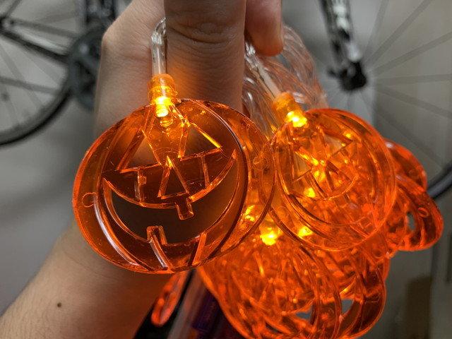 coralov_halloween_ledlight_02.jpg