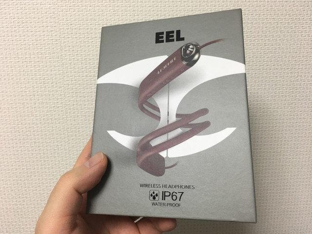 leophile_eel_01.jpg