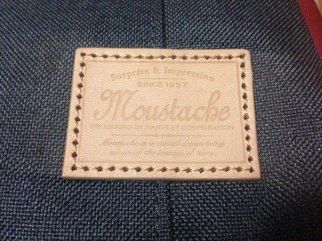moustache_yfw-5818_02.jpg