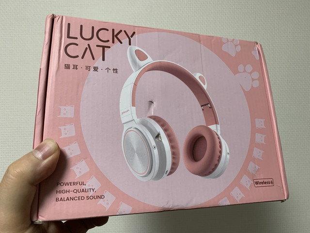picun_lucky_cat_01.jpg